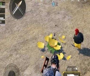和平精英中秋小鸡具体位置