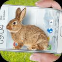 手机屏幕养兔子软件
