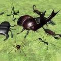 异国昆虫大军
